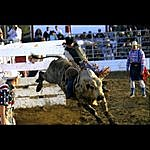 Jeremy Miller His Last Ride