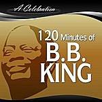 B.B. King A Celebration - 120 Minutes Of B.B. King