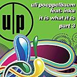 Uli Poeppelbaum It Is What It Is (Part 3) (Feat. Inka)