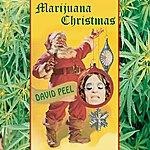 David Peel And The Lower East Side Marijuana Christmas