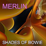 Merlin Shades Of Bowie