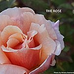 Charlie Williams The Rose