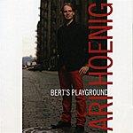 Ari Hoenig Bert's Playground