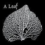 Leaf The E.P.