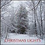 David Bradstreet Christmas Lights