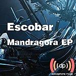 Escobar Mandragora