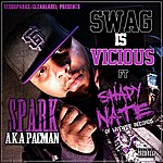 Shady Nate Swag Is Vicious - Single