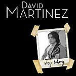 David Martinez Hey Mary