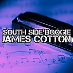 James Cotton South Side Boogie
