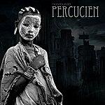 Noisebuilder Percucien