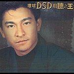 Andy Lau Shi Ting Zhi Wang