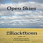 Blackthorn Open Skies