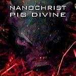 Nanochrist Pig Divine