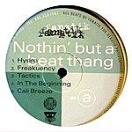 Fanatik Nothin' But A Beat Thang
