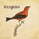 Redbird Redbird