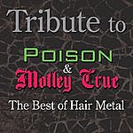 Tribute To Poison And Motley Crue: The Best Of Hair Metal