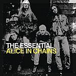 Alice In Chains The Essential Alice In Chains