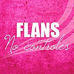 Flans No Controles