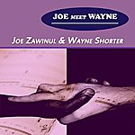Joe Zawinul Joe Meet Wayne
