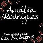 Amália Rodrigues First Lady Of Fado - Los Piconeros