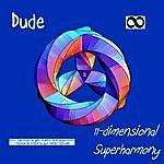 Dude 11-Dimensional Superharmony