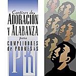 The Maranatha! Promise Band Canticos De Adoracion Y Alabanza Para Cumplidores De Promesa