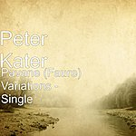 Peter Kater Pavane (Faure) Variations - Single