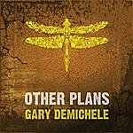Gary DeMichele Other Plans