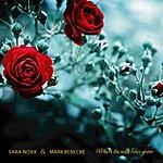 Sara Noxx Where The Wild Roses Grow