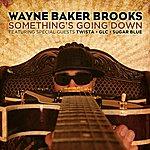 Wayne Baker Brooks Somethings Going Down (Feat. Twista) - Single