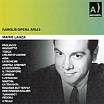 RCA Orchestra Famous Opera Arias