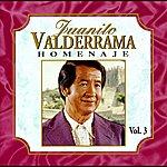 Juanito Valderrama Homenaje Vol. 3