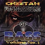DJ Magic Mike Foundations Of Bass Vol. 1