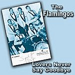 The Flamingos Lovers Never Say Goodbye