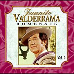 Juanito Valderrama Homenaje Vol. 2