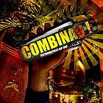 Ink Combinao, Vol. 1