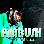 Ambush Tinkin Out Loud