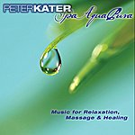 Peter Kater Spa Aqua Pura - Music For Relaxation, Massage And Healing
