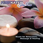 Peter Kater Spa Euro - Music For Relaxation, Massage And Healing.