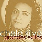 Chelo Silva Grandes Exitos