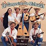 Los Campesinos De Michoacan De Salvador Baldovinos