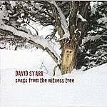 David Starr Songs From The Witness Tree