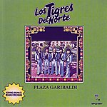 Los Tigres Del Norte Plaza Garibaldi (International Version)