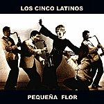 Los Cinco Latinos Pequeña Flor