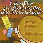 Varios Cantes Andaluces De Navidad