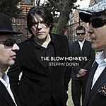 The Blow Monkeys Steppin' Down