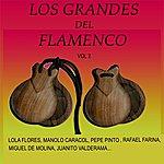 Varios Los Grandes Del Flamenco Vol. 2