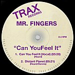 Mr. Fingers Can You Feel It