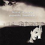 Steve Harley Poetic Justice