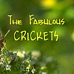 The Crickets The Fabulous